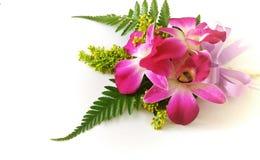 orchideecorsage Stock Afbeeldingen