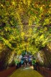 Orchideeextravagantie, Tuinen door de Baai, Singapore Royalty-vrije Stock Fotografie