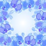 Orchideefeld Lizenzfreies Stockbild