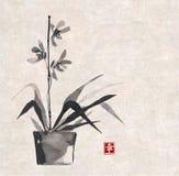 Orchideehand in Japanse stijl wordt getrokken die Royalty-vrije Stock Fotografie