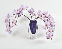 Orchideen Lizenzfreie Stockbilder