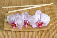 Orchideen auf einzigartigem Konzept des Bambuslebensmittels der mattenzusammenfassung asiatischen Lizenzfreies Stockfoto