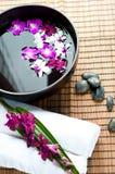 Orchideen in der Badekurorteinstellung Stockfotografie