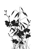 Orchideeën en haver Stock Afbeelding