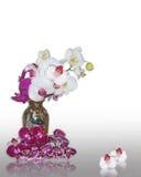 Orchideen im orientalischen Vase Lizenzfreies Stockfoto