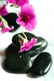 Orchideen und Therapiesteine stockbilder