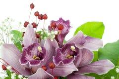 Orchideen von einem Hochzeitsblumenstrauß Stockbilder