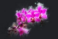 Orchideenblumen auf einer Niederlassung Lizenzfreies Stockfoto