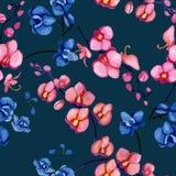 Orchidei błękita wzór royalty ilustracja