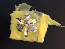 Orchidei szpilka w złocie Obrazy Royalty Free