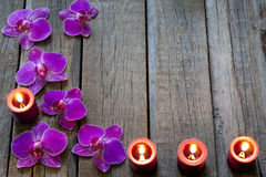 Orchiden på trä stiger ombord bakgrund för brunnsortskönhetsmedelabstrakt begrepp Royaltyfri Fotografi