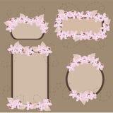 orchids εμβλημάτων απεικόνιση αποθεμάτων