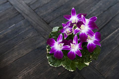 Orchids. A bouquet of purple orchids on top of a wooden table stock photo