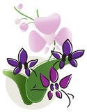 Orchids. Vector illustration of beautiful orchids Stock Photography