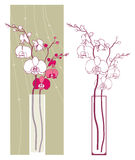 Orchids. Vector illustration of two orchids in the vase royalty free illustration