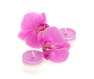 Orchids and aromatic candles Stock Photography