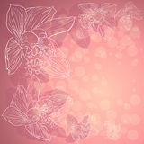 Orchids Background. Delicate pink background with orchids for cards and invitations Stock Illustration