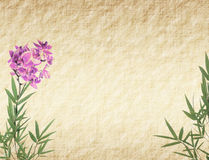 Orchids with bamboo leaves Royalty Free Stock Photo