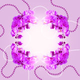 Orchids and beads. Stock Image
