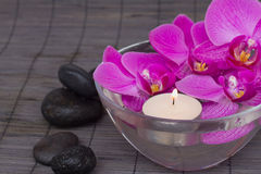 Orchids with candels Royalty Free Stock Images