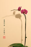 Orchids-Chinese Painting Style Royalty Free Stock Images