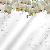 Orchids and diamonds Royalty Free Stock Photography
