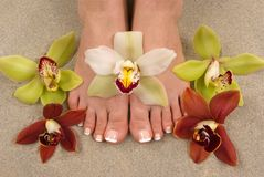Orchids and Feet. Feet with beautiful fresh orchids Stock Images