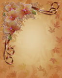 Orchids Floral wedding Border Fall colors Royalty Free Stock Photography