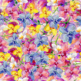 Orchids flowers, watercolor Stock Photo