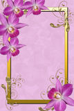 Orchids frame Royalty Free Stock Photography