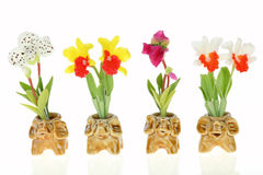 Orchids In Elephant Pot Royalty Free Stock Images