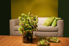 Orchids In Interior Royalty Free Stock Photo