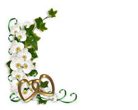 Orchids and Ivy Wedding Invitation Royalty Free Stock Image
