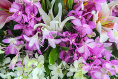 Orchids and Lily flowers. Beautiful closeup bouquet background Royalty Free Stock Photography