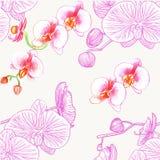 orchids mönsan seamless vattenfärg royaltyfri illustrationer