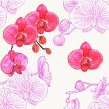 orchids mönsan seamless vattenfärg stock illustrationer