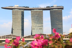 Orchids and Marina Bay Sands hotel, Singapore Stock Photo