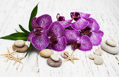 Orchids and massage stone Royalty Free Stock Photography