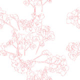 Orchids pattern Stock Image