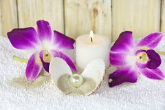 Orchids and pearl in seashell with candle Stock Photography