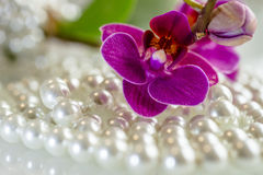 Orchids and pearls. Purple orchid and pearls on a white glass Stock Photos