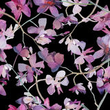 Orchids purple on black background seamless pattern. Stock Images