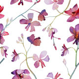 Orchids purple seamless pattern. Watercolor painting. Stock Photos