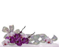 Orchids and ribbons border. Image and illustration composition  satin floral ribbons, purple orchids on white background for wedding invitation, Easter, Mothers Royalty Free Stock Image