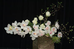 Orchids and roses composition. Ikebana on black background, orchids and roses royalty free stock photography