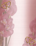 Orchids on Satin wedding border Royalty Free Stock Photography