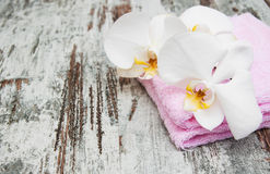 Orchids spa Stock Images