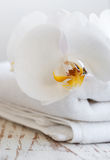 Orchids and spa towel Royalty Free Stock Photo
