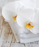 Orchids and spa towel Royalty Free Stock Photography