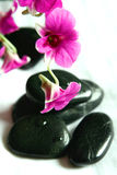 Orchids and therapy stones. As part of spa setting Stock Images